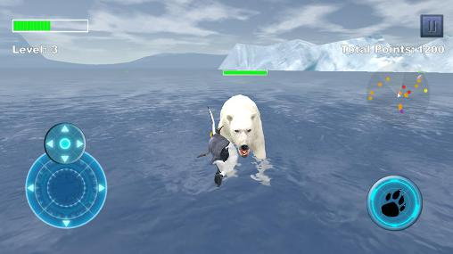Arctic penguin Screenshot
