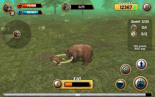 Wild bear simulator 3D Screenshot