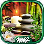 Mystery objects zen garden icono