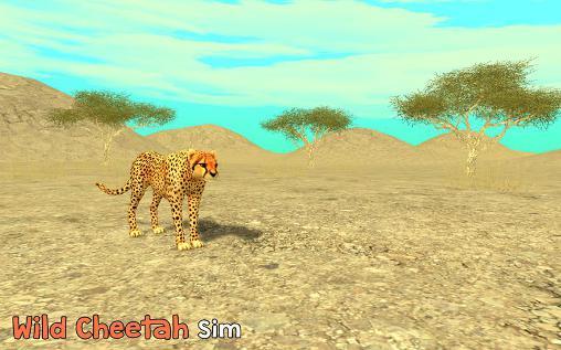 Wild cheetah sim 3D capture d'écran 1