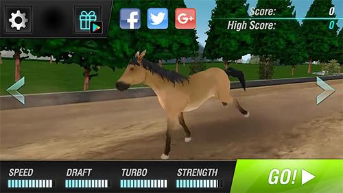 Rennspiele Cowboys horse racing field für das Smartphone