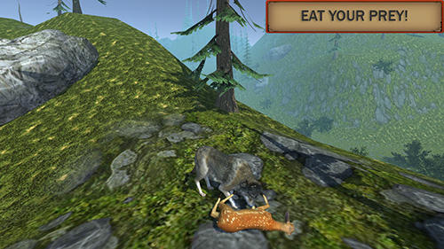 Wolf simulator evolution capture d'écran 1