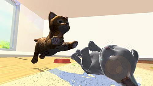 Daily kitten: Virtual cat pet for iPhone