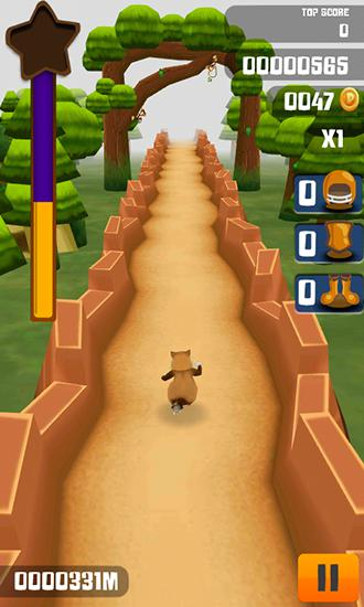 Kitty run: Crazy cats for Android