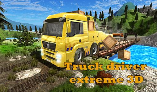 Truck driver extreme 3D скриншот 1