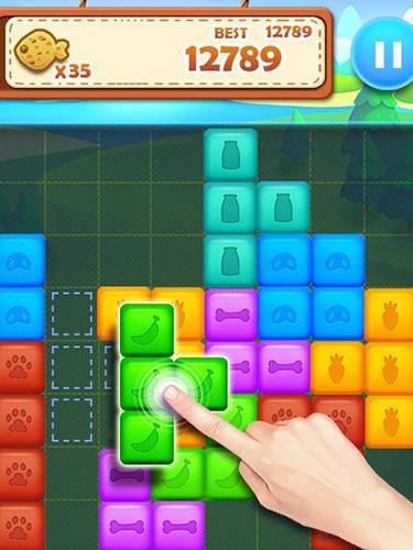 Pet block puzzle: Puzzle mania für Android