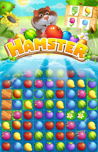 Hamster: Match 3 game Screenshot