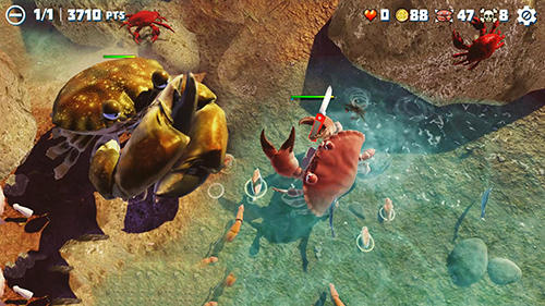 King of crabs pour Android