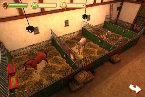 Mundo 3D de caballos: Equitación. Edición de Navidad