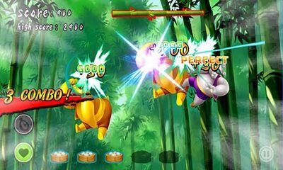 Ninja-Spiele Ninja Panda auf Deutsch