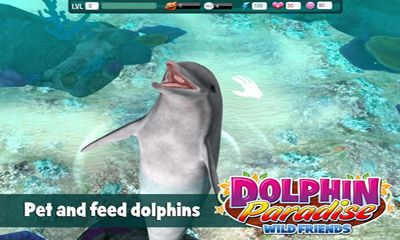 Dolphin paradise. Wild friends für Android