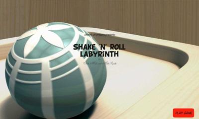 Shake 'n' Roll Labyrinth icon