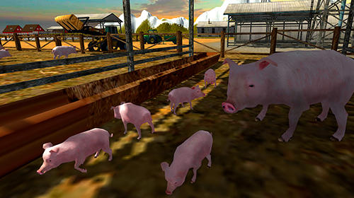 Euro farm simulator: Pigs für Android