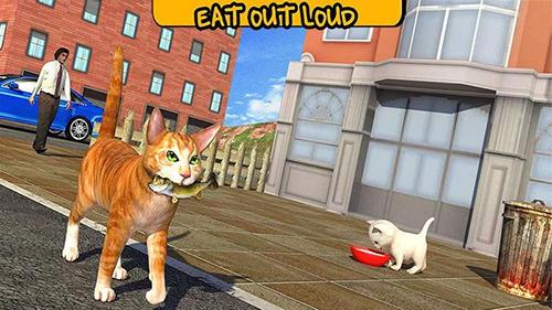 Simulator-Spiele Street cat sim 2016 für das Smartphone
