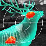 Wild hunt: Sport hunting game icon