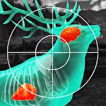 Иконка Wild hunt: Sport hunting game