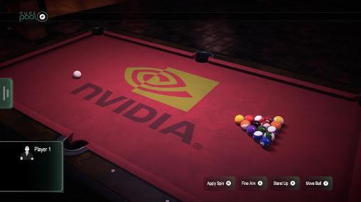 Pure pool screenshot 1