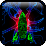 Bacteria Arcade Edition Symbol