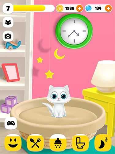 Paw paw cat Screenshot