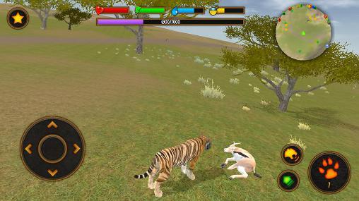 Clan of tigers Screenshot