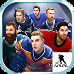 Puzzle hockey icon