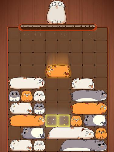 Logikspiele Maru slide: Block puzzle für das Smartphone