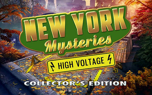 New York mysteries 2 screenshot 1
