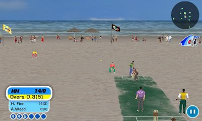 Beach Cricket screenshot 1