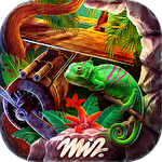 Hidden objects: Jungle mystery icon