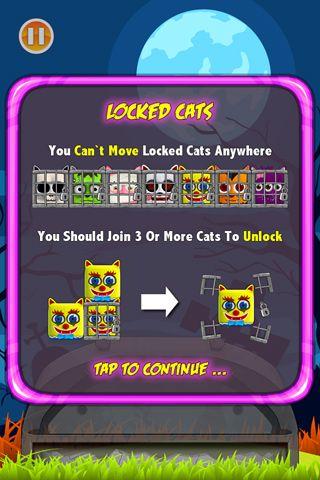 Les mauvais chats!