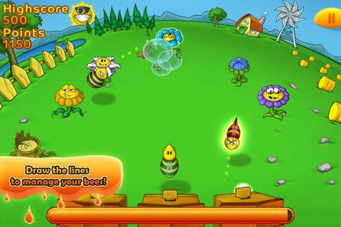 Bienenfarm auf Deutsch