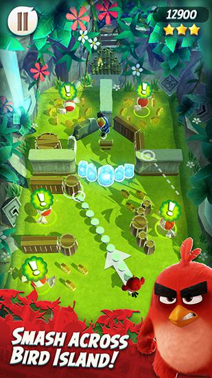Arcade Angry birds action! for smartphone