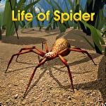 Life of spider Symbol