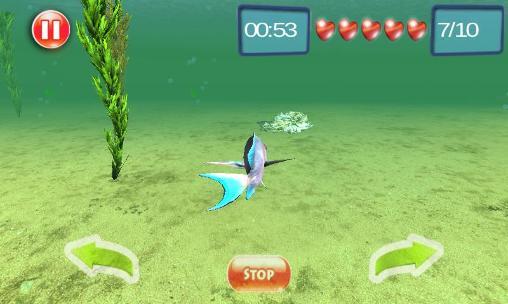 Tiere Underwater world adventure 3D auf Deutsch