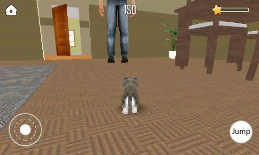 Pet simulator auf Deutsch