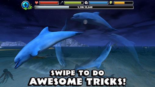 Dolphin simulator para Android