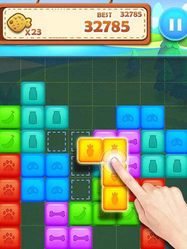 Logik Pet block puzzle: Puzzle mania für das Smartphone