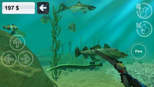 Hunter underwater spearfishing auf Deutsch