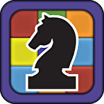 Colour chess icon