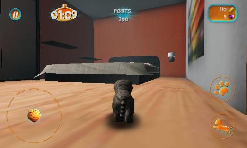 Cat simulator 2015 screenshot 1