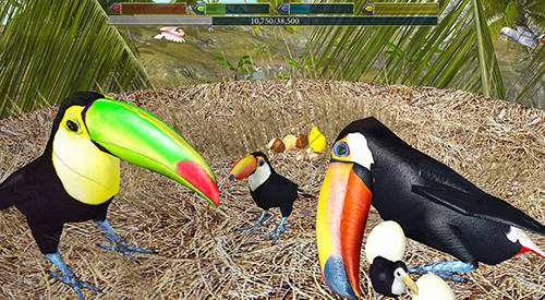Ultimate bird simulator pour Android