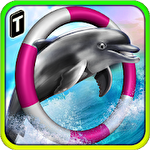 Dolphin racing 3D icon