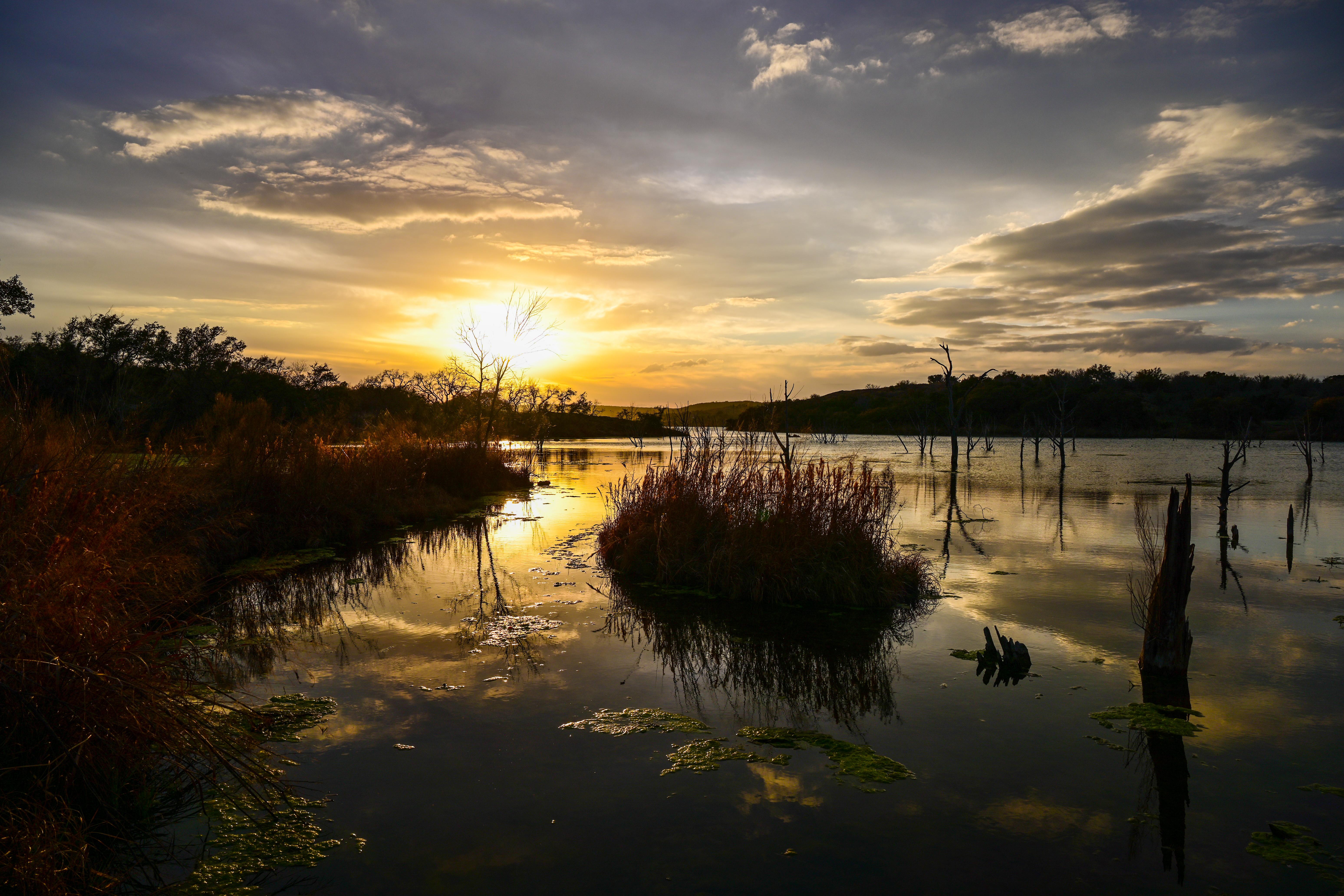 73375 Hintergrundbild herunterladen Natur, Sunset, Grass, See - Bildschirmschoner und Bilder kostenlos