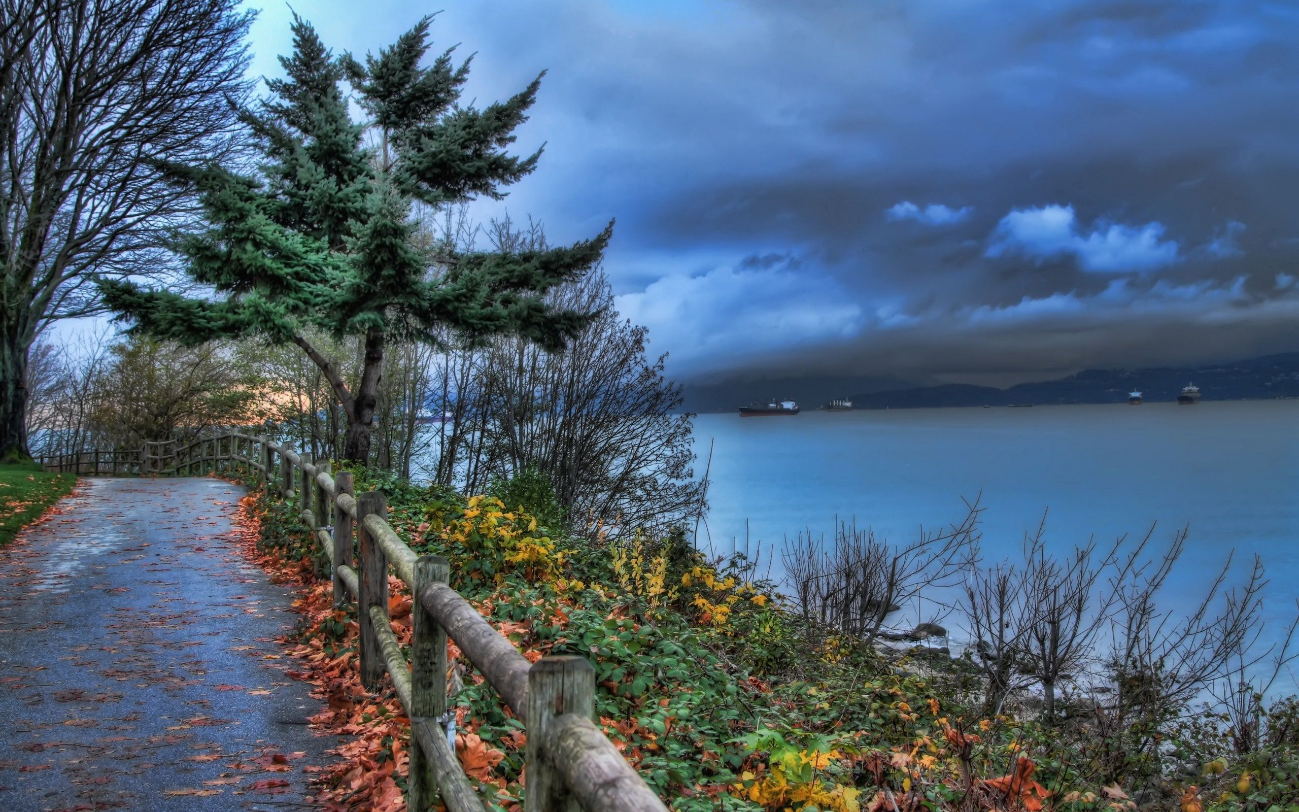 157693 download wallpaper Nature, Hedge, Fence, Park, Sea, Ships, Mainly Cloudy, Overcast screensavers and pictures for free