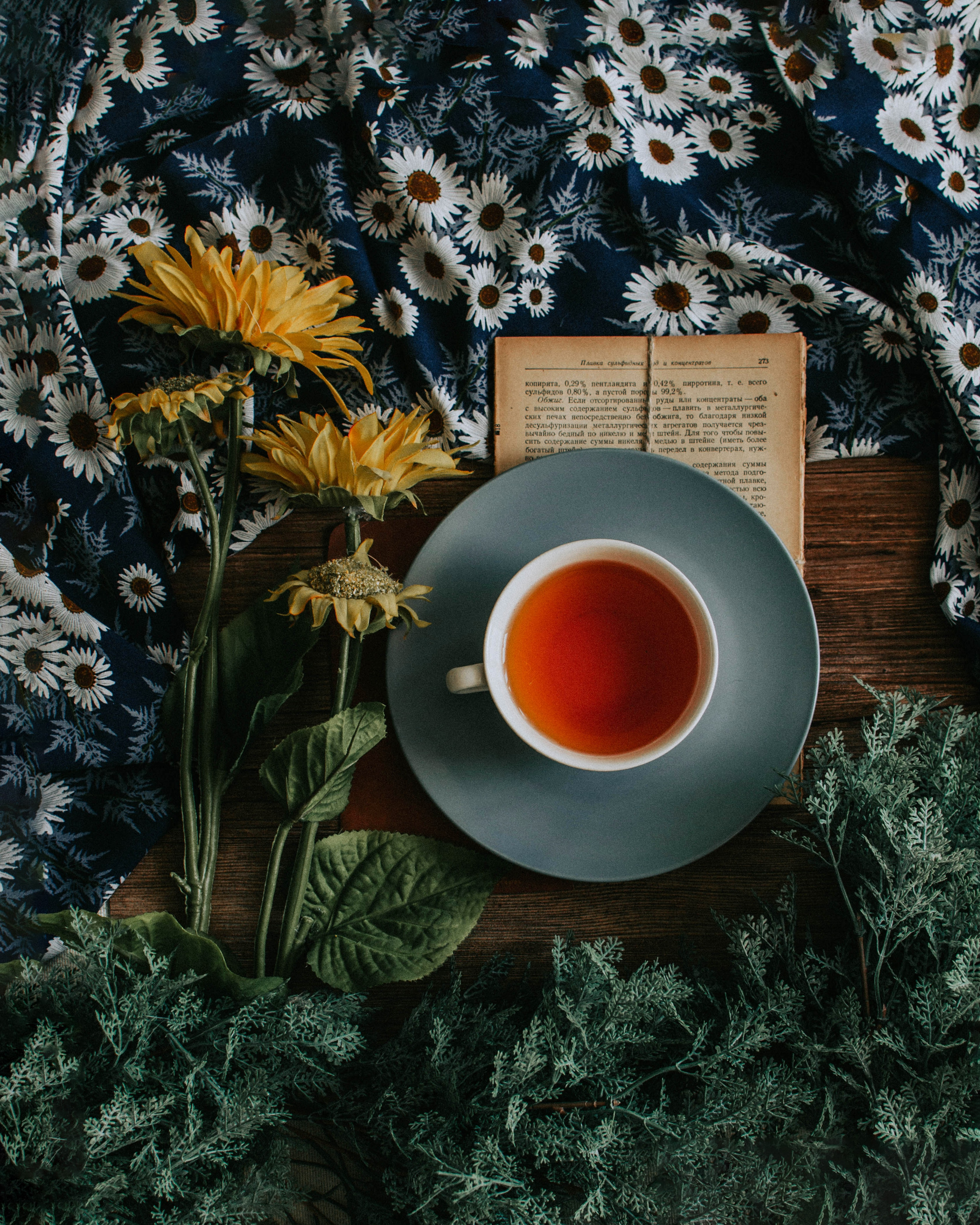 128367 Screensavers and Wallpapers Still Life for phone. Download Flowers, Food, Still Life, Cup, Cloth pictures for free