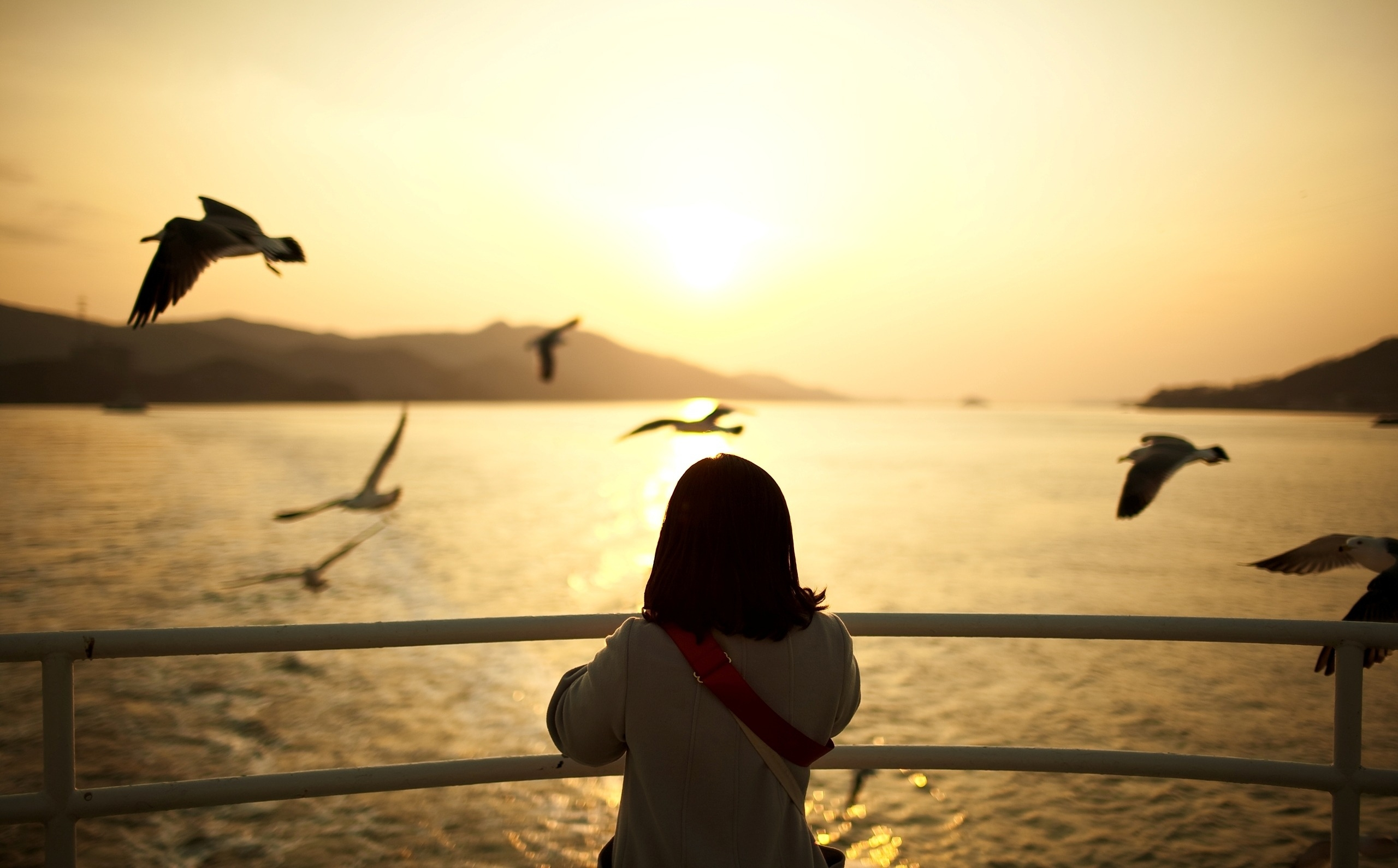 141834 download wallpaper Landscape, Sunset, Sun, Seagulls, Swimming, Miscellanea, Miscellaneous, Girl, Ship screensavers and pictures for free