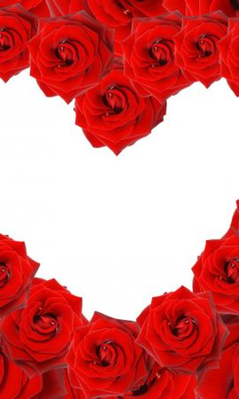 20354 baixar papel de parede Férias, Flores, Fundo, Rosas, Corações, Dia Dos Namorados - protetores de tela e imagens gratuitamente
