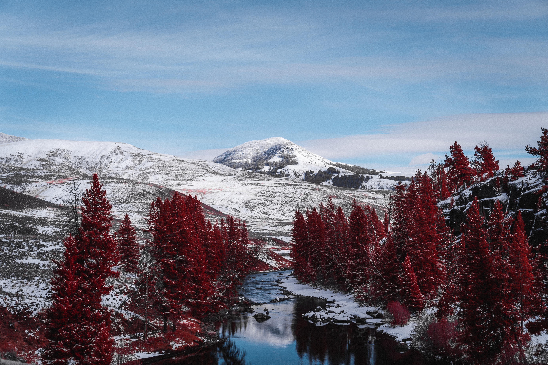 93259 скачать обои Пейзаж, Природа, Деревья, Река, Горы, Холмы - заставки и картинки бесплатно