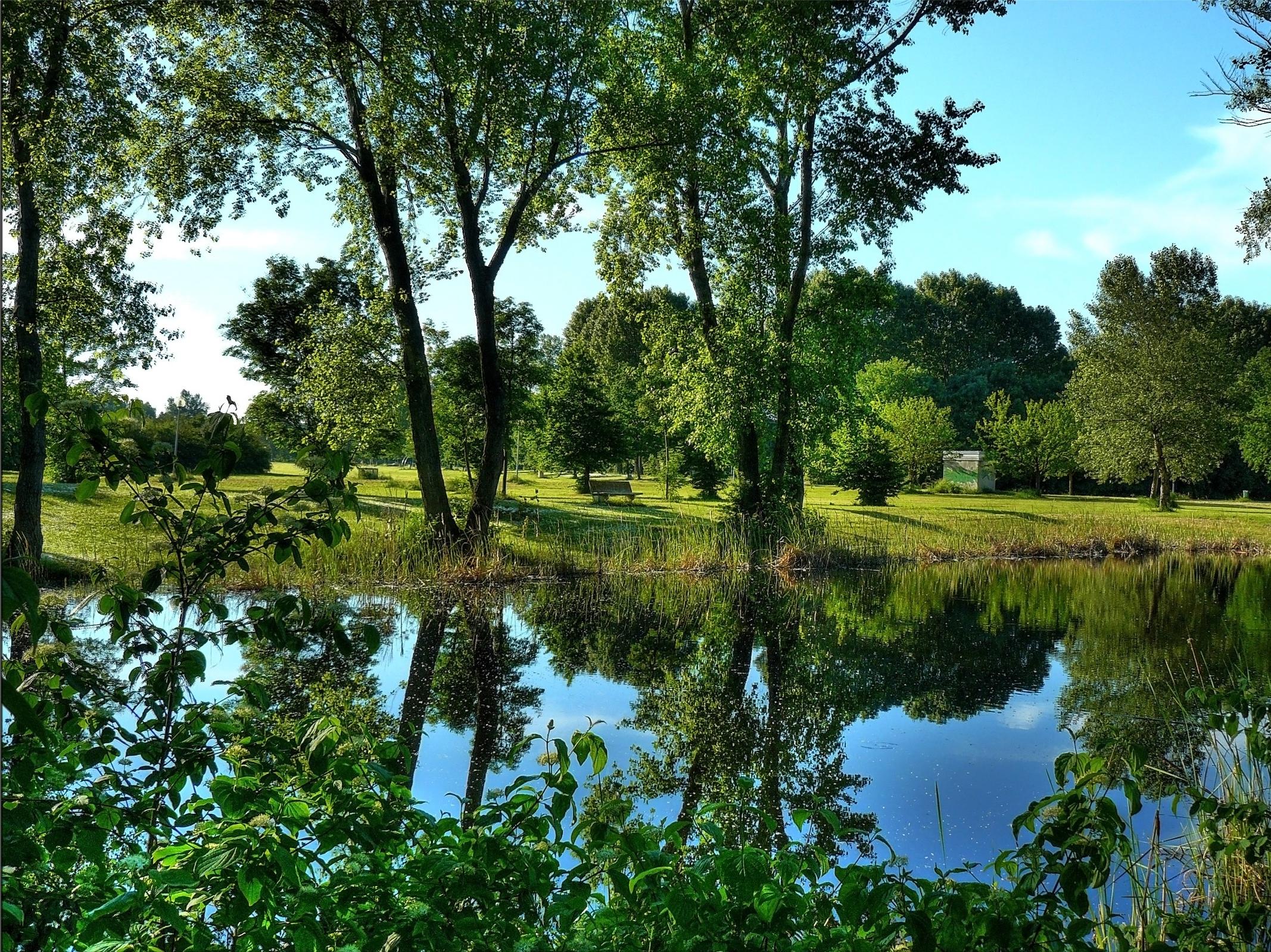 63568 завантажити шпалери Пейзаж, Природа, Річка, Дерева, Кущі - заставки і картинки безкоштовно