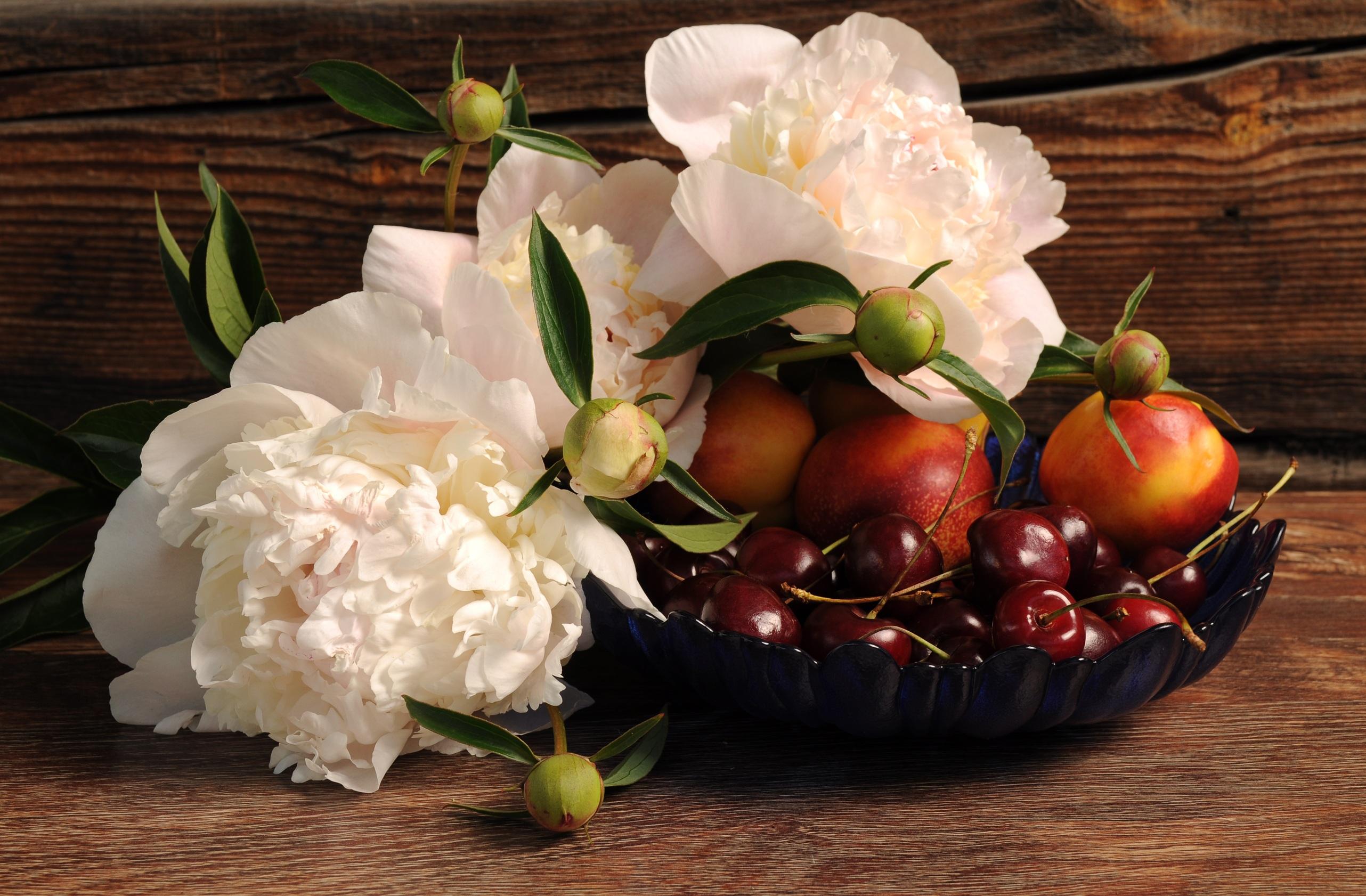58895 скачать обои Еда, Цветы, Черешня, Пионы, Нектарин - заставки и картинки бесплатно